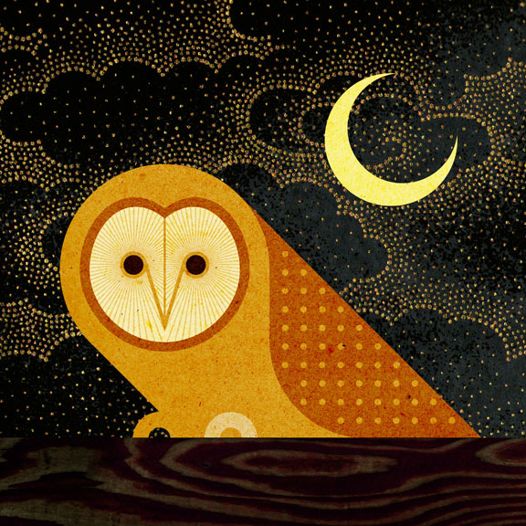 Scott Partridge - Illustration - Barn Owl