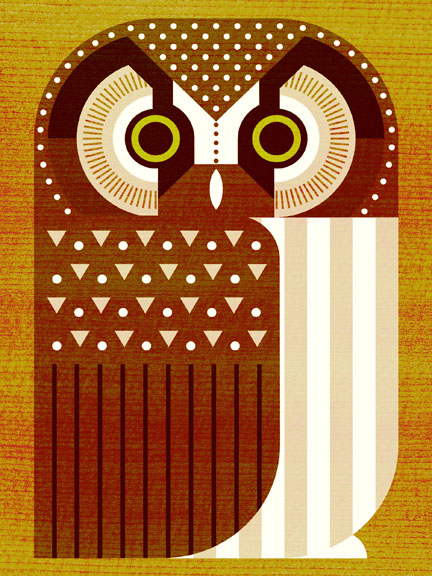 Scott Partridge - Illustration - Boreal Owl