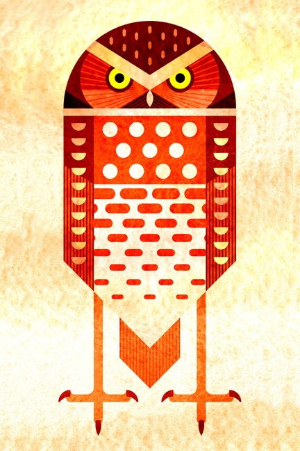 Scott Partridge - Illustration - Burrowing Owl