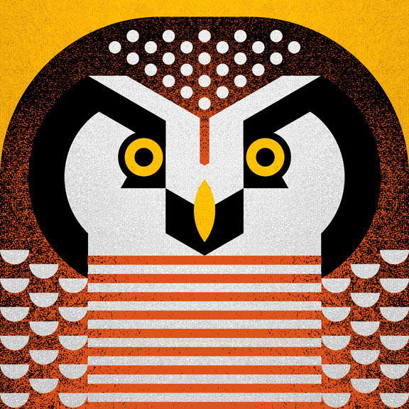Scott Partridge - Illustration - Hawk Owl