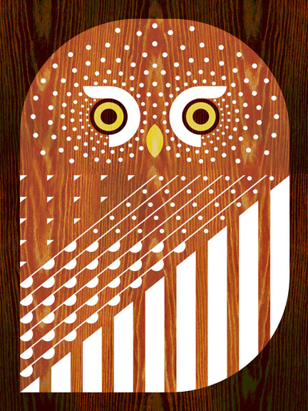 Scott Partridge - Illustration - Northern Pygmy Owl