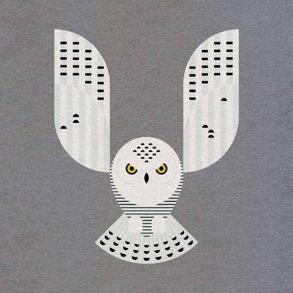 Scott Partridge - Illustration - Snowy Owl