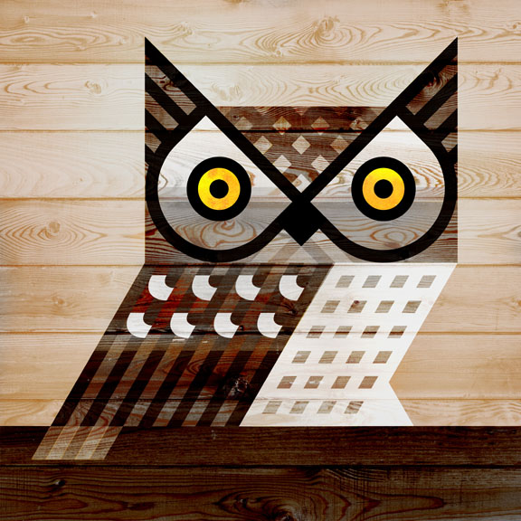 Scott Partridge - Illustration - Western Screech Owl